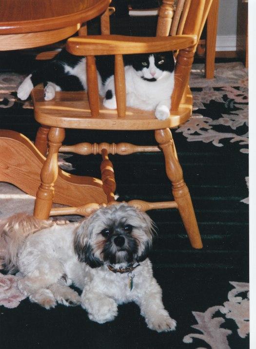 Ka Tu and feline friend ...